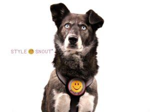 Sticker – Patch it! – Smiley, 8cm